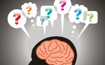Загадки мозга