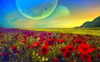 Тайна цветочной планеты